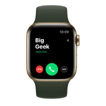 Apple Watch Series 6 GPS + Cellular, 40mm, корпус из стали золотого цвета, спортивный ремешок цвета «кипрский зелёный»