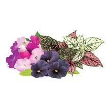 Набор картриджей для умного сада Click and Grow «Цветочный микс» (комплект — петуния, анютины глазки, гипоэстес)