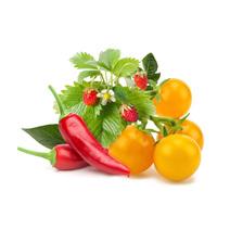 Набор картриджей для умного сада Click and Grow «Фруктово-овощной микс» (комплект — перец чили, жёлтый помидор, земляника)