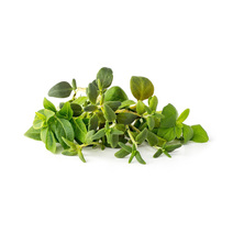 Набор картриджей для умного сада Click and Grow «Микс итальянских трав» (комплект — карликовый базилик, майоран, тимьян)